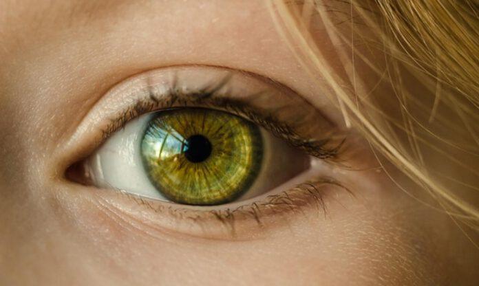 badanie dna ok, Badanie dna oka – czy jest czego się bać?
